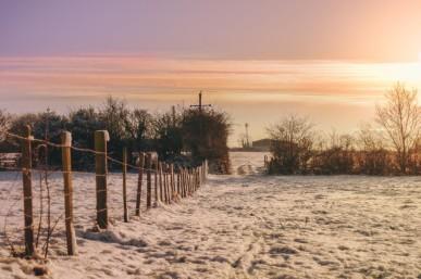winter farm hungary
